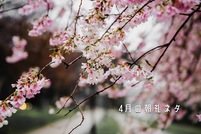 4月の朝礼ネタ